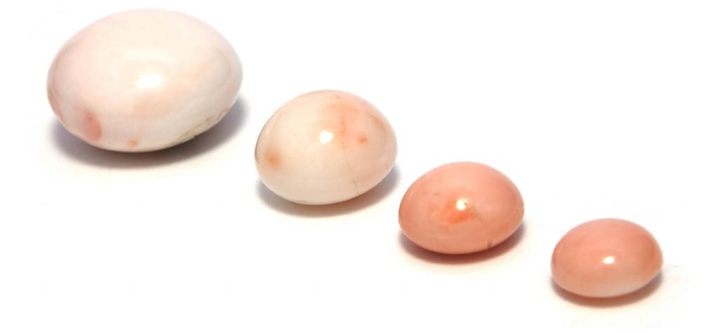 Bottoni Bianco Rosa